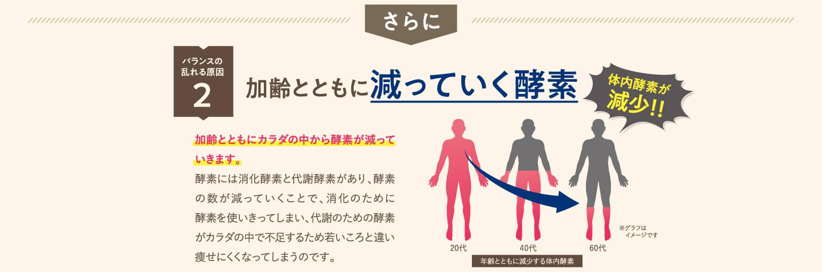 さらに バランスの乱れる原因2 加齢とともに減っていく酵素