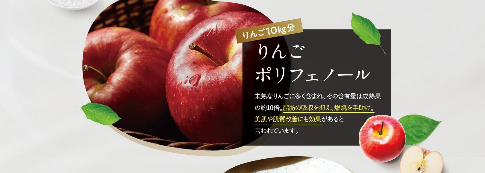 りんご10㎏分 りんごポリフェノール
