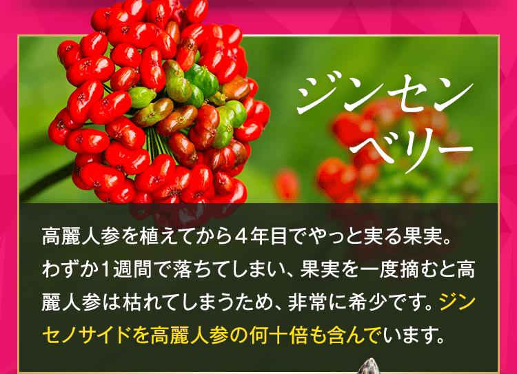 3.ジンセンベリー:高麗人参からやっと実る果実。非常に希少で、ジンセノサイドを高麗人参の何十倍も含む