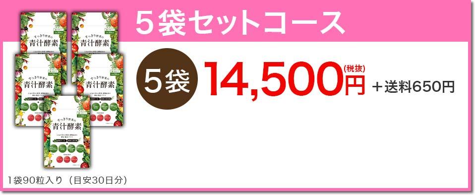 5袋セットコース 14,500円+650円