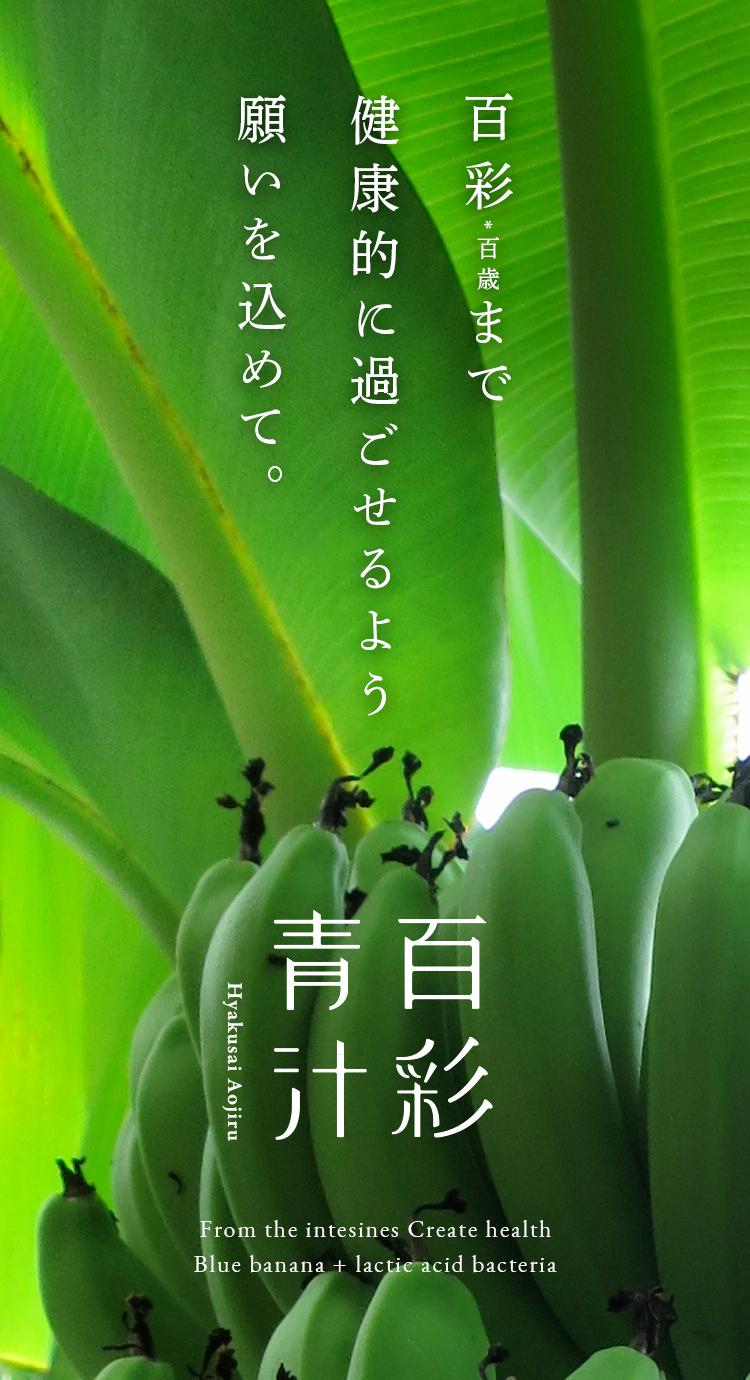 百彩*百歳まで健康的に過ごせるよう願いを込めて。百彩青汁 From the intesines Create health/Blue banana + lactic acid bacteria