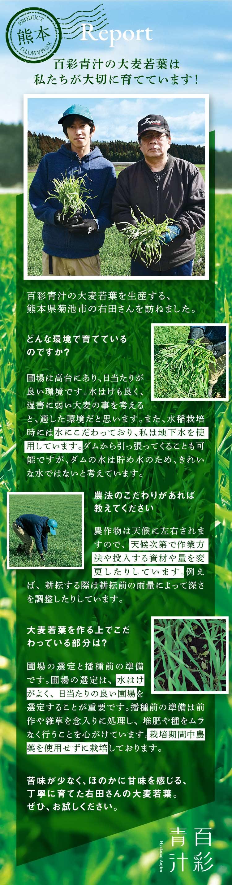 Report 熊本から 百彩青汁の大麦若葉は私たちが大切に育てています!百彩青汁の大麦若葉を生産する、熊本県菊池市の右田さんを訪ねました。ーどんな環境で育てているのですか?圃場は高台にあり、日当たりが良い環境です。水はけも良く、湿害に弱い大麦の事を考えると、適した環境だと思います。また、水稲栽培時には水にこだわっており、私は地下水を使用しています。ダムから引っ張ってくることも可能ですが、ダムの水は貯め水のため、きれいな水ではないと考えています。/農法のこだわりがあれば教えてください 農作物は天候に左右されますので、天候次第で作業方法や投入する資材や量を変更したりしています。例えば、耕耘する際は耕耘前の雨量によって深さを調整したりしています。/大麦若葉を作る上でこだわっている部分は? 圃場の選定と播種前の準備です。圃場の選定は、水はけがよく、日当たりの良い圃場を選定することが重要です。播種前の準備は前作や雑草を念入りに処理し、堆肥や種をムラなく行うことを心がけています。栽培期間中農薬を使用せずに栽培しております。苦味が少なく、ほのかに甘味を感じる、丁寧に育てた右田さんの大麦若葉。ぜひ、お試しください。