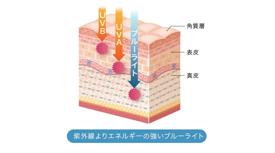 紫外線よりエネルギーの強いブルーライト