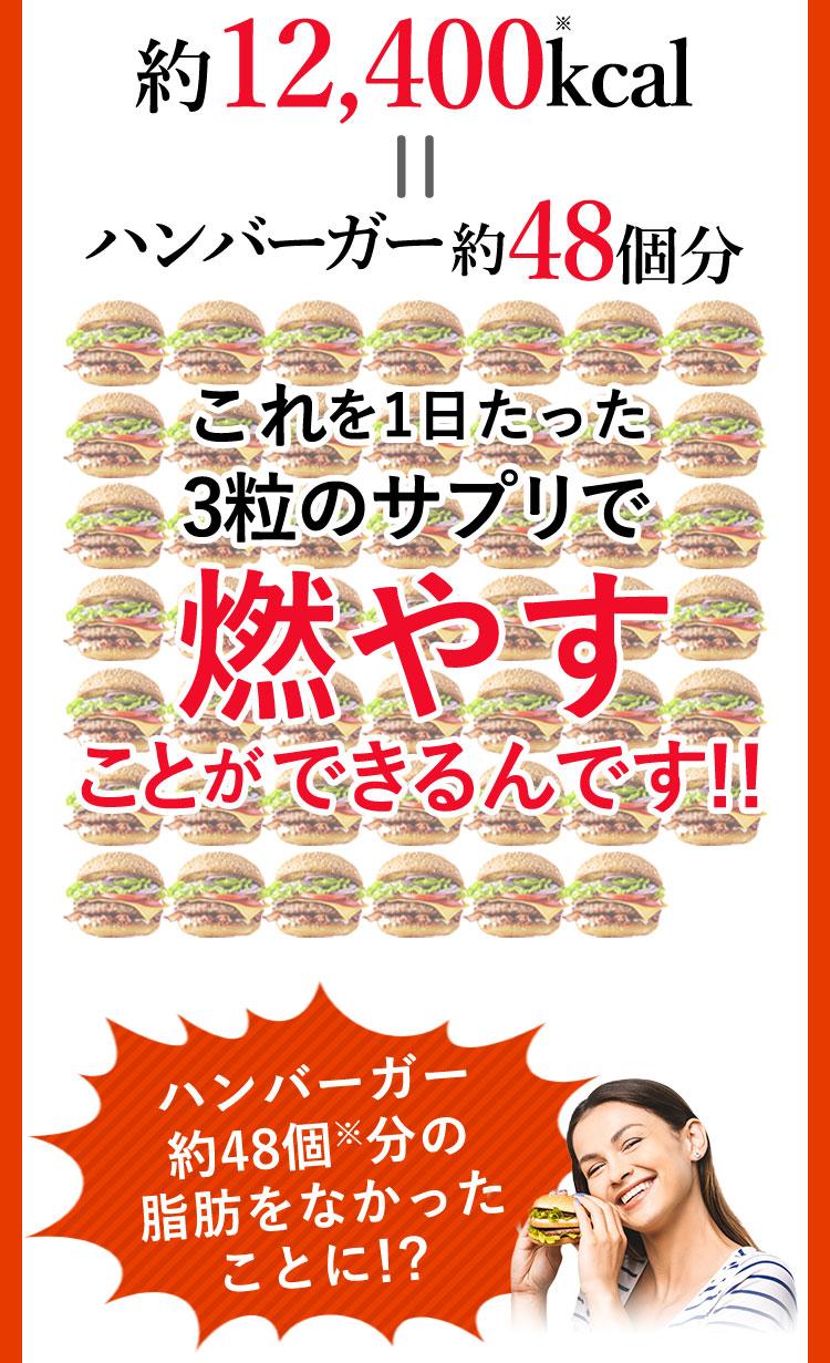 約12,400kcal=ハンバーガー約48個分のしぼうをなかったことに!?