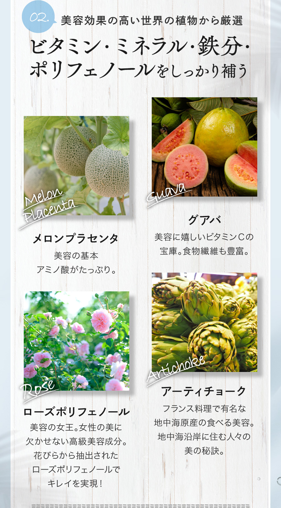 02 美容効果の高い世界の植物から厳選 ビタミン・ミネラル・鉄分・ポリフェノールをしっかり補う