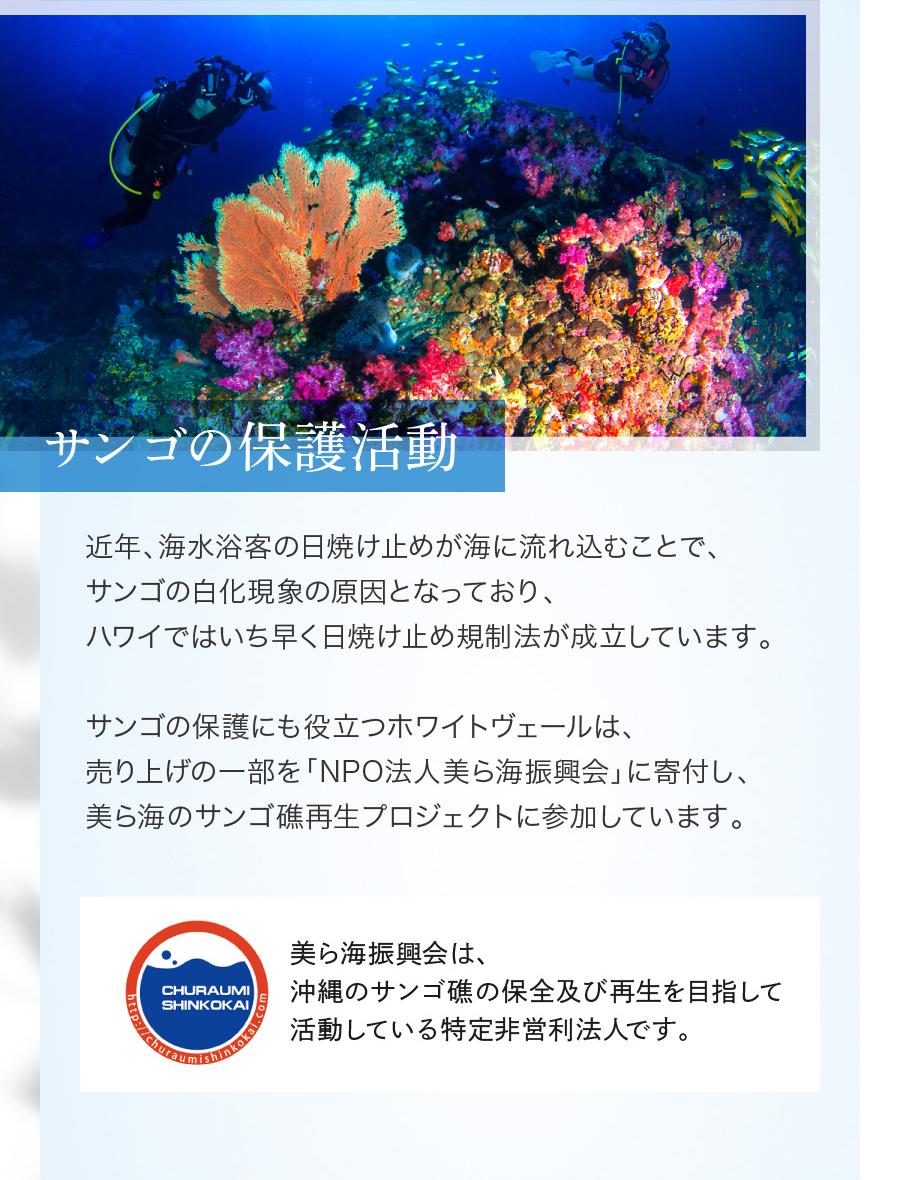 サンゴの保護活動