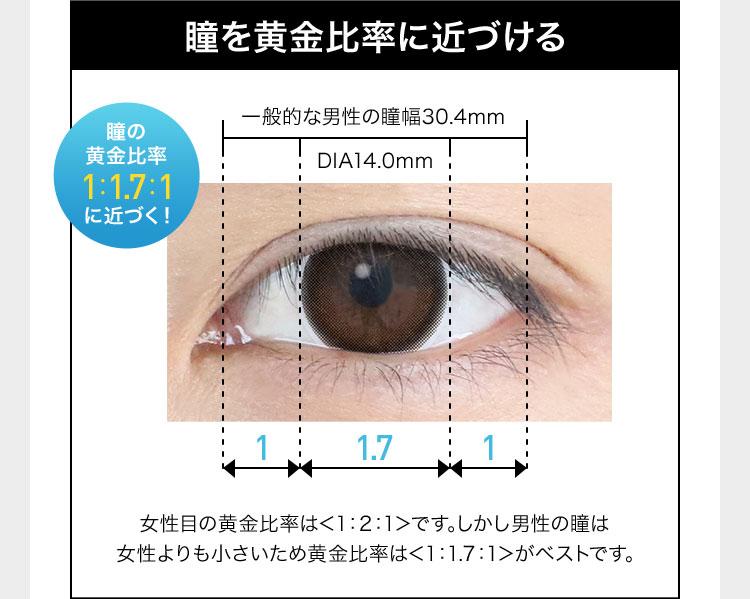 瞳を黄金比率に近づける 瞳の黄金比率 1:1.7:1 に近づく! 一般的な男性の瞳幅30.4mm DIA14.Omm 1 1.7 1 女性目の黄金比率は<1:2:1>です。しかし男性の瞳は女性よりも小さいため黄金比率は<1:1.7:1>がベストです。