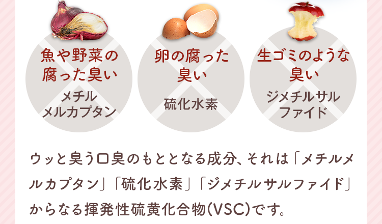 揮発性硫黄化合物(VSC)です。