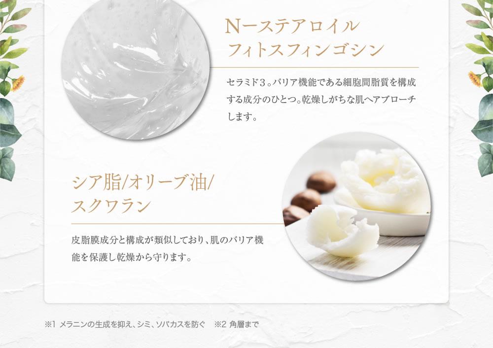 N-ステアロイル フィットスフィンゴシン、シア脂/オリーブ油/スクワラン