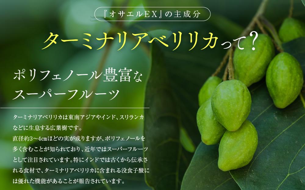 『オサエルEX』の主成分ターミナリアベリリカは、ポリフェノール豊富なスーパーフルーツ