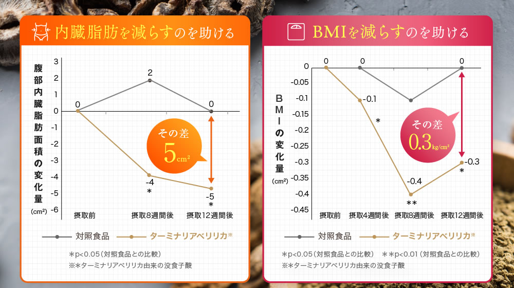 試験結果:内臓脂肪、BMIを減らすのを助ける