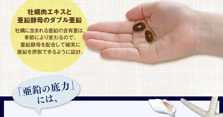 牡蠣に含まれる亜鉛の含有量は季節により変わるので、亜鉛酵母を配合して確実に亜鉛を摂取できるように設計。