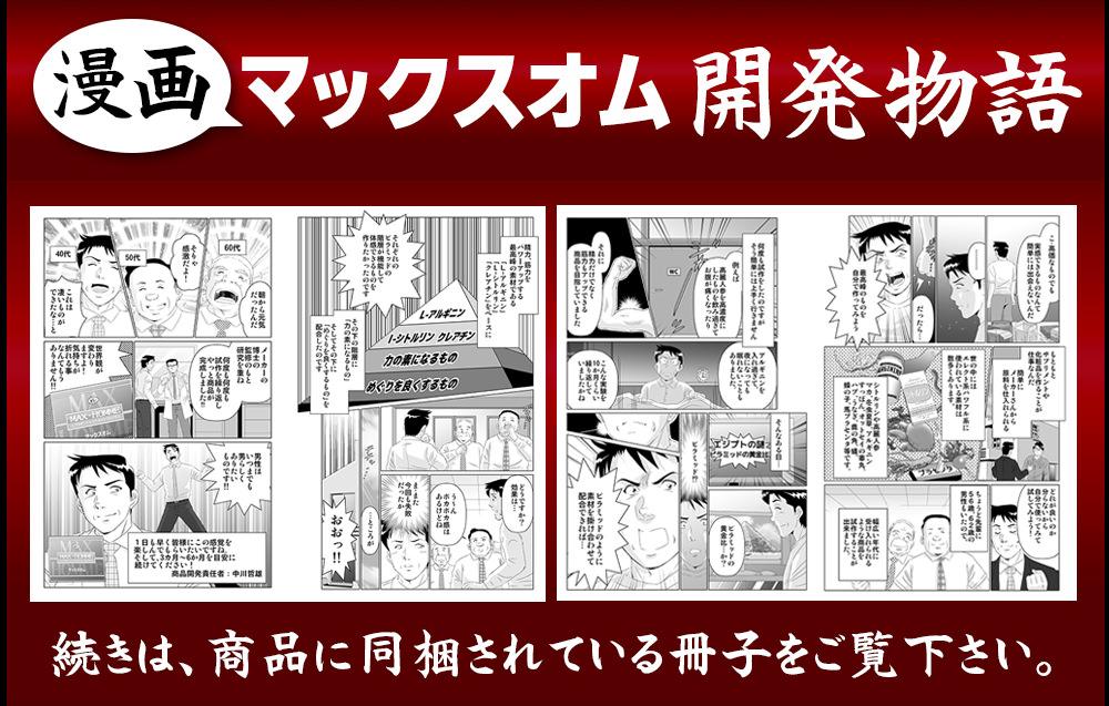 漫画マックスオム開発秘話!続きは商品に同梱されている冊子をご覧ください。