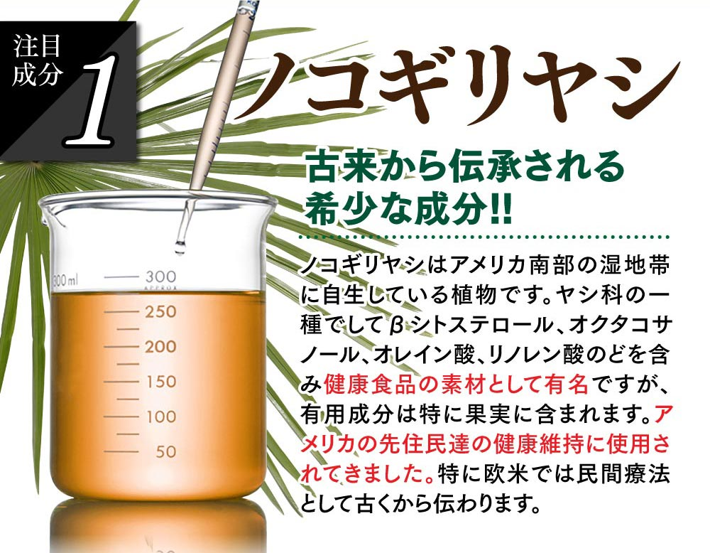 ノコギリヤシは健康食品の素材として有名です