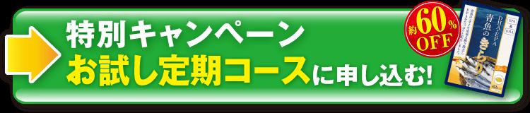 [約60%OFF]特別キャンペーン「お試し定期コース」に申し込む!