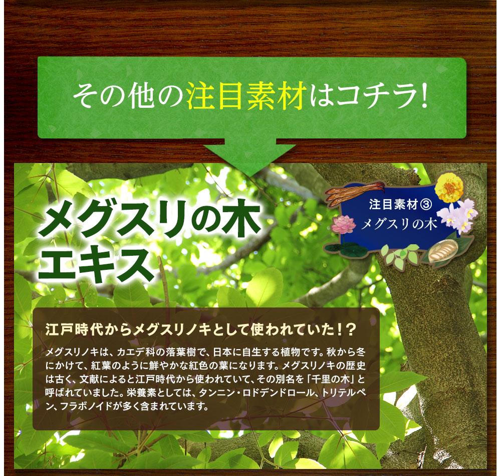 その他の注目素材はコチラ!注目素材③、江戸時代からメグスリノキとして使われていた、メグスリの木エキス。