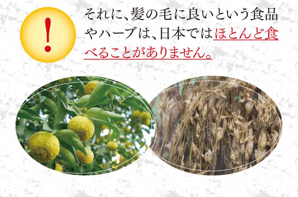 それに、髪の毛に良いという食品やハーブは、日本ではほとんど食べることがありません。