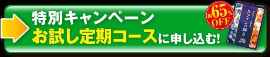 [約65%OFF]特別キャンペーン「お試し定期コース」に申し込む!