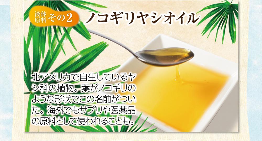 【液体原料:その2】ノコギリヤシオイル。北アメリカで自生しているヤシ科の植物。葉がノコギリのような形状でこの名前がついた。海外でもサプリや医薬品の原料として使われることも。