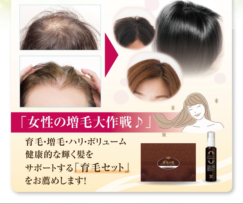 「女性の増毛大作戦♪」育毛・増毛・ハリ・ボリューム健康的な輝く髪をサポートする「育毛セット」をお薦めします!