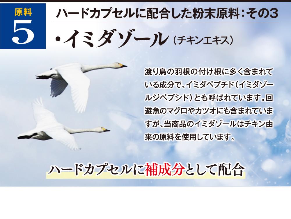 ハードカプセルに配合した粉末原料:その3 イミダゾール(チキンエキス) 渡り鳥の羽根の付け根に多く含まれている成分で、イミダペプチド(イミダゾールジペプシド)とも呼ばれています。回遊魚のマグロやカツオにも含まれていますが、当商品のイミダゾールはチキン由来の原料を使用しています。ハードカプセルに補成分として配合