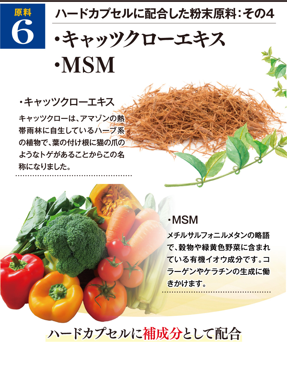 ハードカプセルに配合した粉末原料:その4 ・キャッツクローエキス(キャッツクローは、アマゾンの熱帯雨林に自生しているハーブ系の植物で、葉の付け根に猫の爪のようなトゲがあることからこの名称になりました。)・MSM(メチルサルフォニルメタンの略語で、穀物や緑黄色野菜に含まれている有機イオウ成分です。コラーゲンやケラチンの生成に働きかけます。)ハードカプセルに補成分として配合