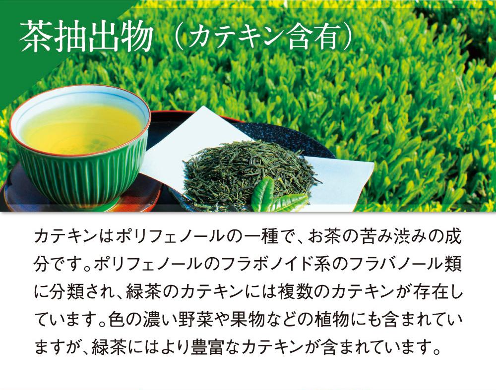 茶抽出物(カテキン配合)緑茶にはより豊富なカテキンが含まれます