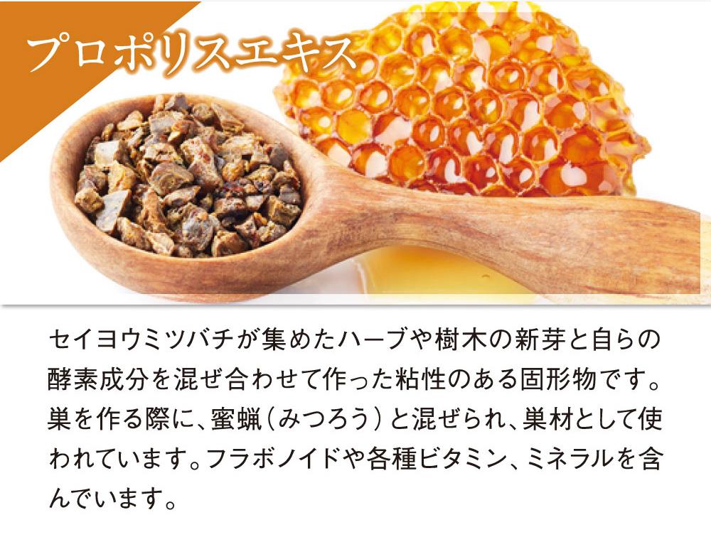 プロポリスエキス:セイヨウミツバチがハーブや樹木の新芽と自らの酵素成分を混ぜ合わせて作った粘土のある成分です