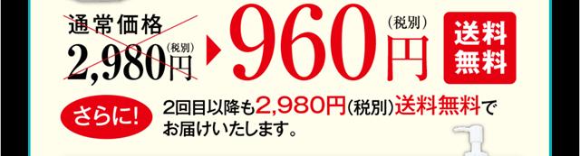 ふきとり洗顔スピードウォッシュ初回特別価格1本960円送料無料。2回目以降も2,980円送料無料でお届けします。