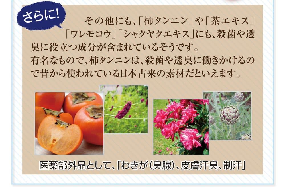 その他にも『柿タンニン』『茶エキス』『ワレモコウ』『シャクヤクエキス』にも殺菌や透臭に役立つ成分が含まれているそうです。