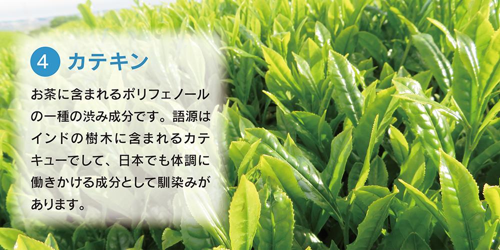 4.カテキン お茶に含まれるポリフェノールの一種の渋み成分です。語源はインドの樹木に含まれるカテキューでして、日本でも体調に働きかける成分として馴染みがあります。
