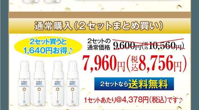通常購入(2セットまとめ買い)7,960円