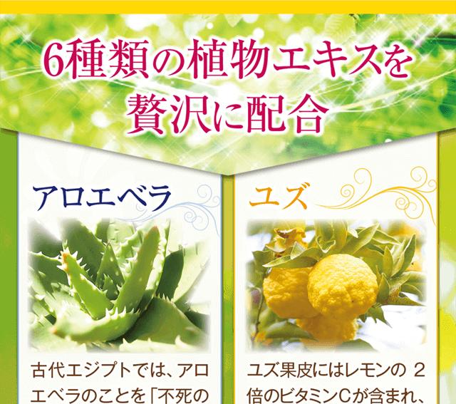 6種類の植物エキスを贅沢に配合♪古来より美肌に愛用されたアロエベラ・ビタミンCが豊富なユズ