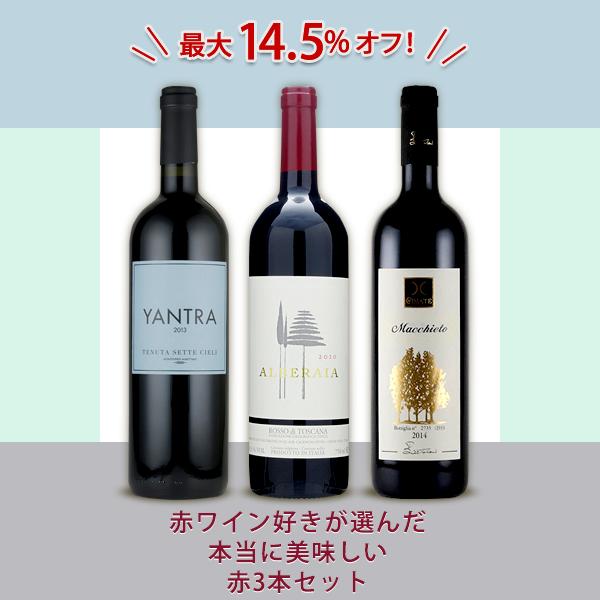 【入荷待ち】赤ワイン好きが選んだ本当に美味しい赤3本セット(アルベライア&ヤントラ&マッキエート)