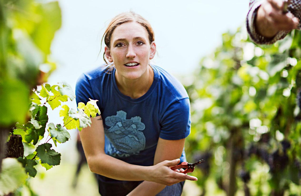 造り手のワイン造りに向ける情熱や哲学や人柄を知る