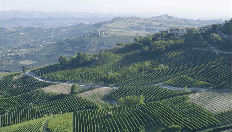 01:イタリアワインの世界へようこそ