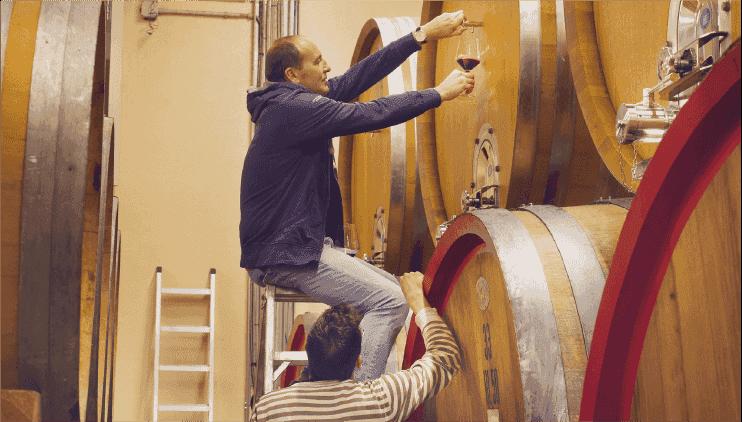 04:ブドウがワインに変わるまで