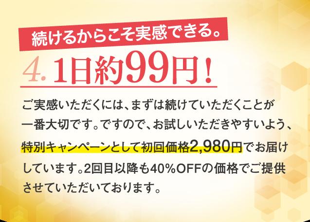 4、1日約99円!
