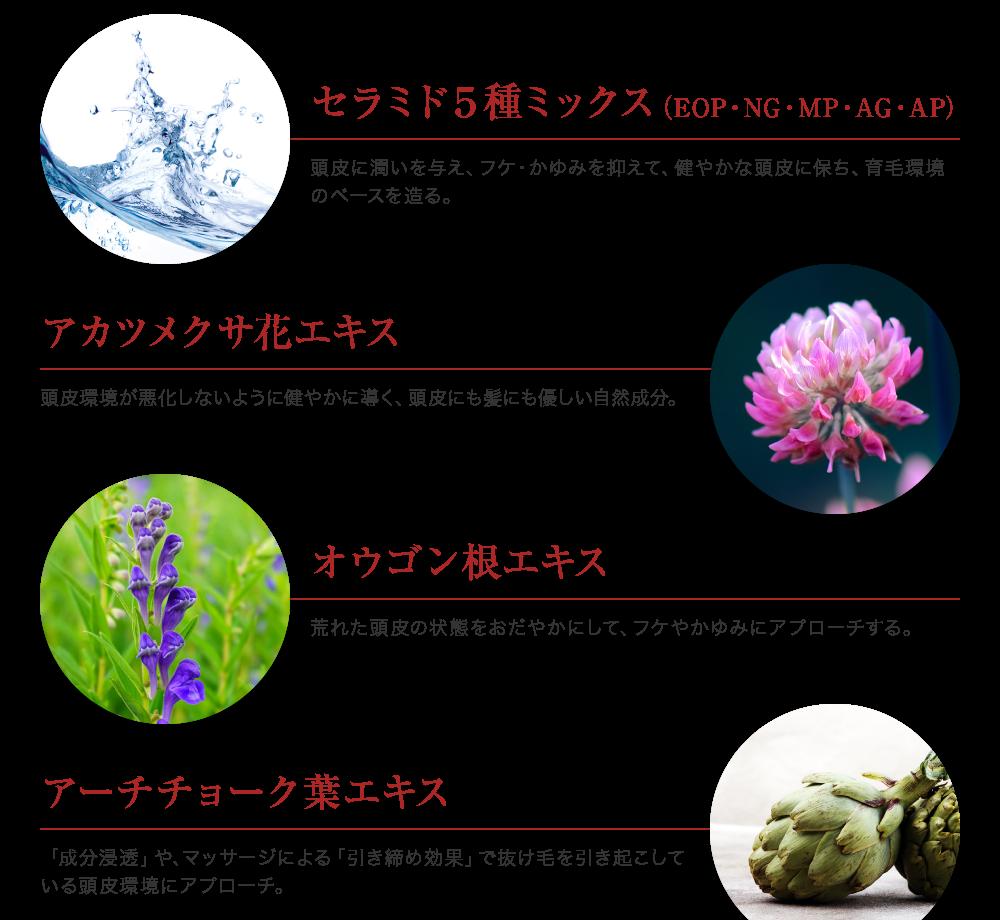 セラミド5種ミックス、アカツメクサ花エキス、オウゴン根エキス、アーチチョーク葉エキス