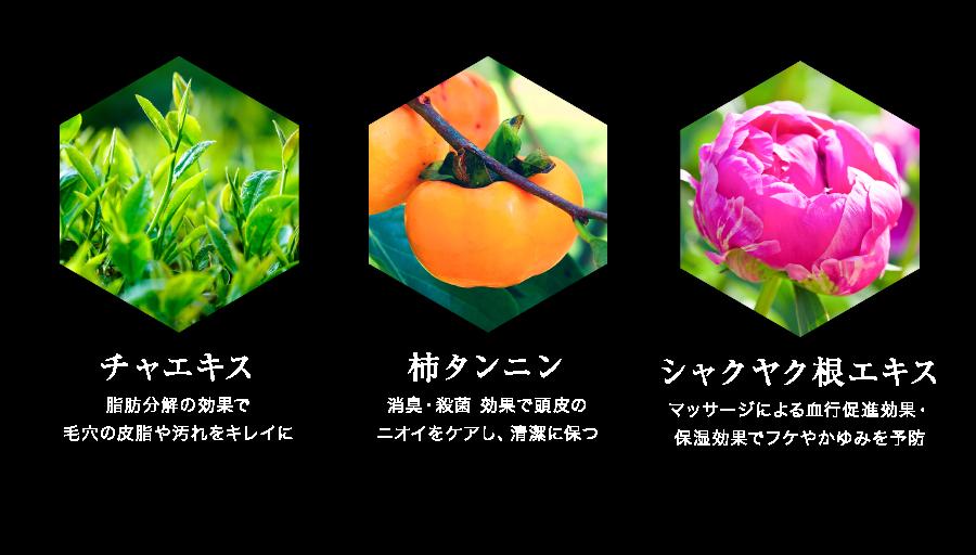 チャエキス、柿タンニン、シャクヤク根エキス