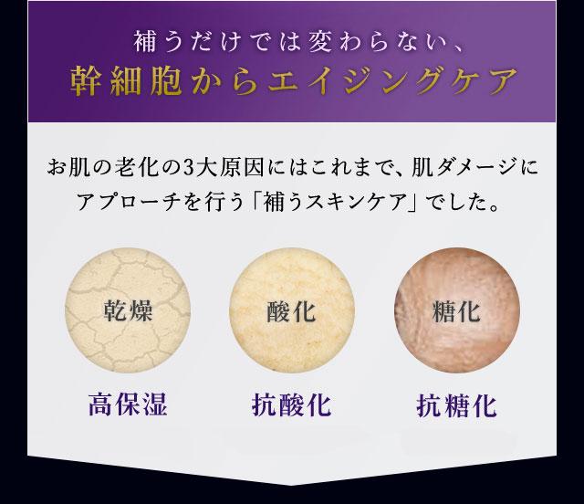 補うだけでは変わらない、幹細胞からエイジングケア