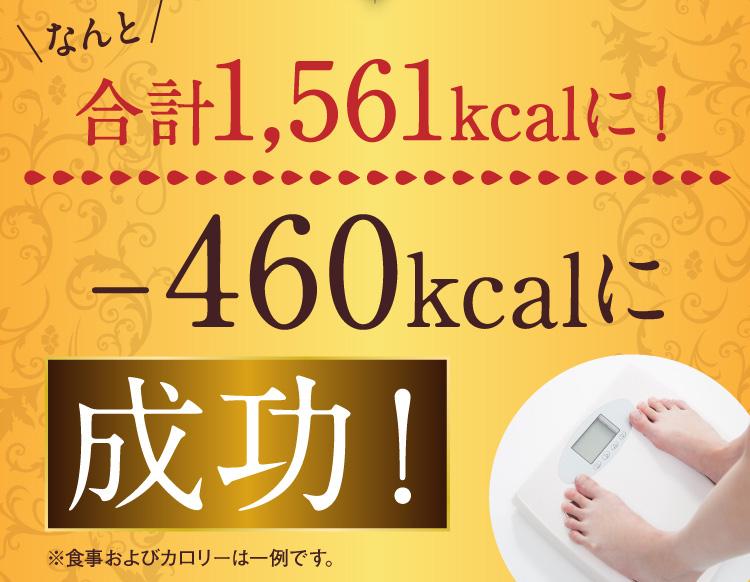 なんと、合計1561kcalになるので-460kcalに成功!