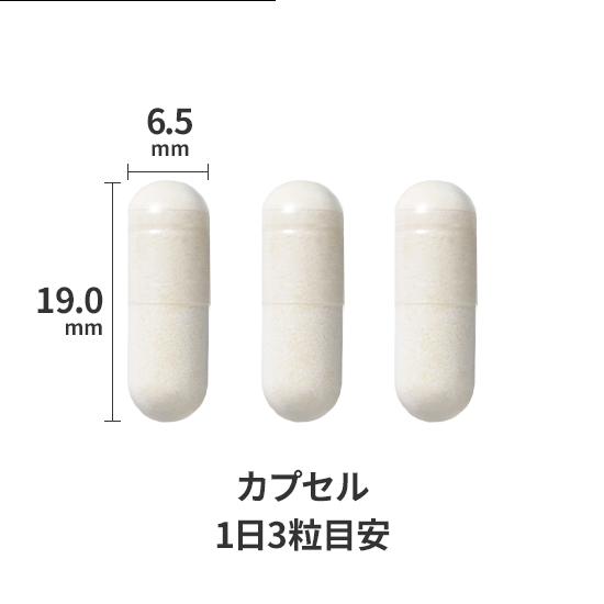 横6.5ミリメートル、縦19ミリメートルのカプセル錠剤を1日3粒目安