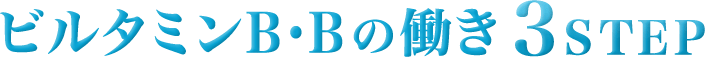 ビルタミンB・Bの働き3STEP