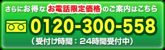 初回限定お取り寄せ挑戦価格 30日分1,900円(税抜)
