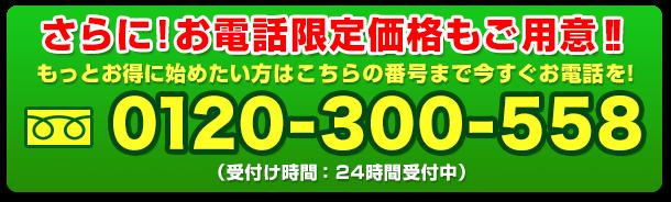 お電話でのご購入はこちら 0120-300-558 (受付け時間:24時間受付中)