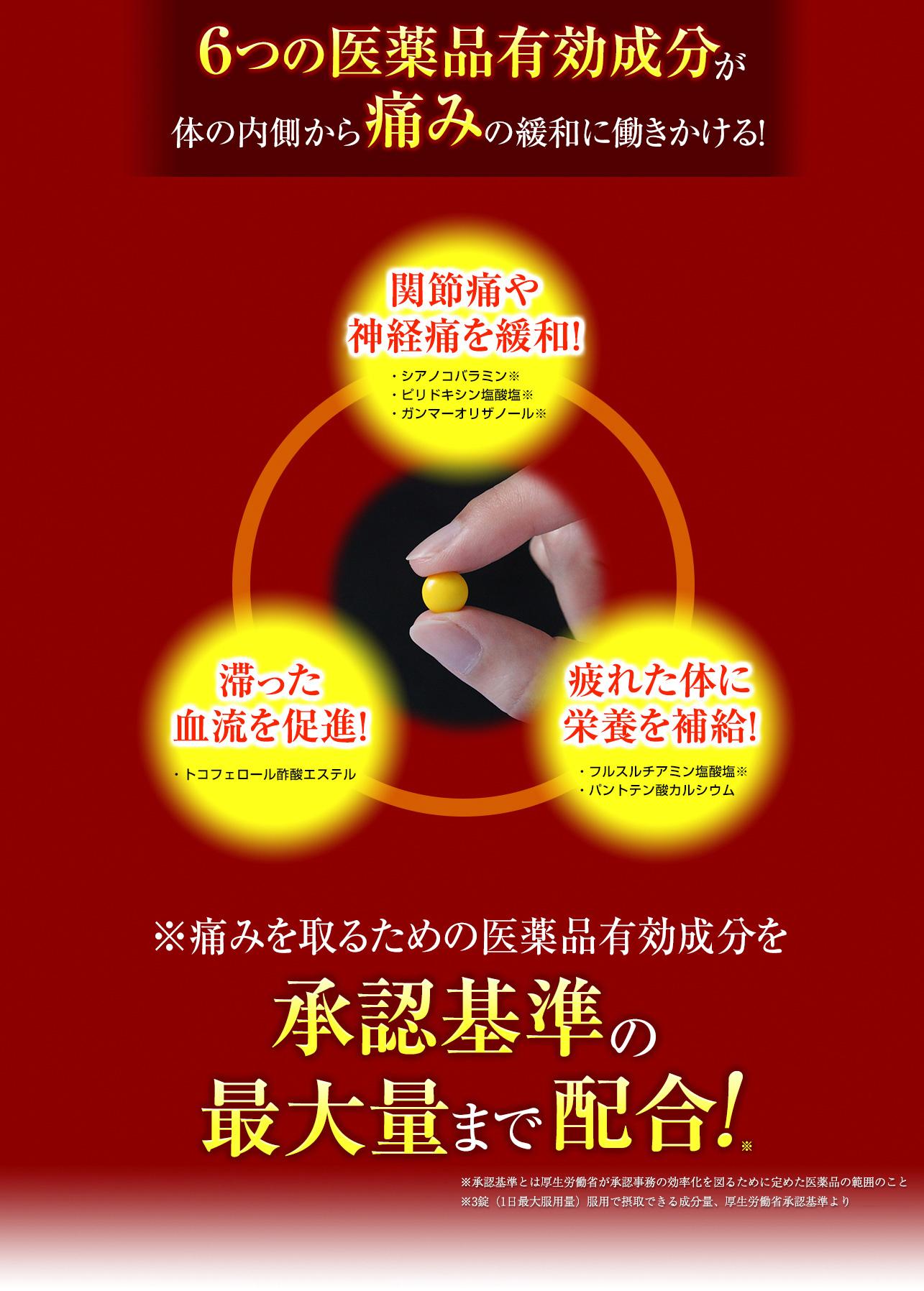 6つの医薬品有効成分が体の内側から痛みの緩和に働きかける!