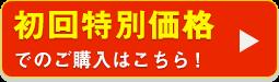 初回980円(税抜)でのご購入はこちら