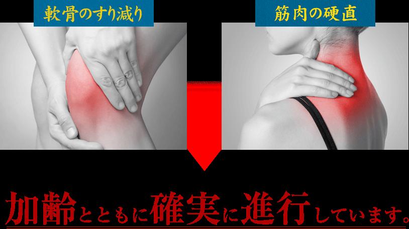 軟骨のすり減り・筋肉の硬直は加齢とともに確実に進行しています。