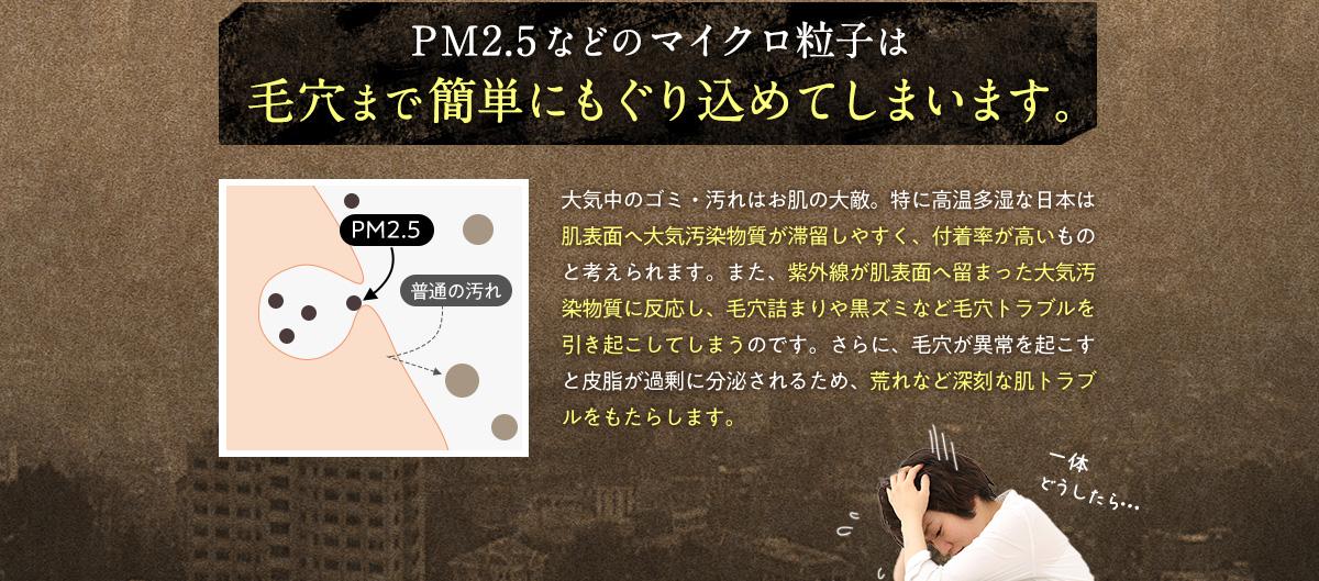 PM2.5等のマイクロ粒子は毛穴まで簡単に潜り込みます